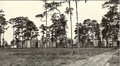 1911 University of Florida campus view.png