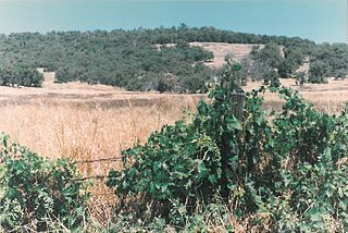 Mount Richon, Western Australia Suburb of Perth, Western Australia