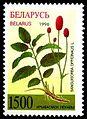 1996. Stamp of Belarus 0164.jpg
