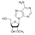 2'-O-methyl-adenosine.png