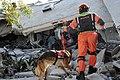 2010년 중앙119구조단 아이티 지진 국제출동100119 몬타나호텔 수색활동 (369).jpg