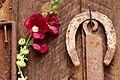 2012-366-189 Flowers Never Rust (7525397970).jpg