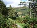 20120830 18 Ireland - Co. Wicklow - Glendalough (7961540076).jpg