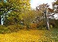 20121029025DR Dresden-Südvorstadt Beutlerpark Herbst.jpg