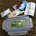 2013-05-17 Inhalt Geocache Box anagoria.JPG