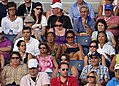 2013 US Open (Tennis) (9649566345).jpg