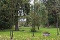 2014 Krosnowice, park przy dworze, 04.JPG