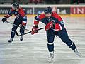 20150207 1850 Ice Hockey AUT SVK 9940.jpg