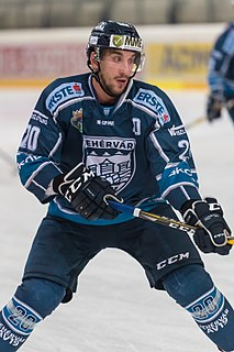 István Sofron Hungarian ice hockey player