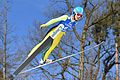 20170205 Ski Jumping World Cup Hinzenbach 7565.jpg