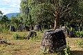 20171115 Plain of Jars Laos Site 3 2765 DxO.jpg