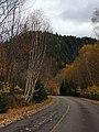"20181016 - 32 - Mont-Tremblant National Park - ""Adieu Tremblant"".jpg"