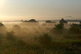 20200809 Poranna mgła nad Wisłą w Krakowie 0621 3501.jpg