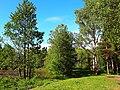 2162. Парк Сосновка. Уголок у Собачьего озера.jpg