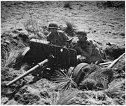 37 m-m anti-tank gun at Camp Carson training camp in Colorado - NARA - 197170