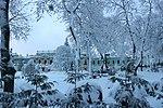 80-382-5002 вид з Маріїнського парку на палац.jpg