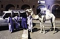 ASC Leiden - van Achterberg Collection - 14 - 29 - Trois hommes et une femme à côté d'un chameau blanc - Tamanrasset, Algérie - 1984.jpg
