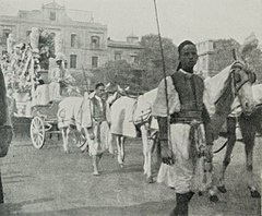 A Grand Jewish Funeral at Cairo. Boys in Velvet Robes. (1911) - TIMEA.jpg