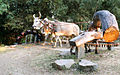 A cattle driven irrigation system from groundwater well India.jpg