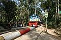 A train crossing through Lawachara National Park 02.jpg