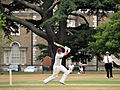 A view of Cricket at Peper Harow 2010 DSC 8907.jpg