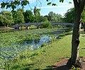 Abbey Park, Leicester - geograph.org.uk - 1942706.jpg