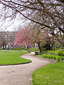 Abercromby Square 2.jpg