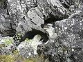 Abhainn Inbhir Ghuiserein goes through a natural pipe - geograph.org.uk - 1319299.jpg