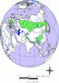 Abies eurasien.png