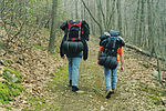 Activities topic image Hikers on a trail.jpg