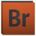 Adobe Bridge CS5 icon.png