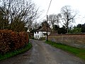Adwell, copper beech hedge and houses-geograph-3904487-by-Bikeboy.jpg