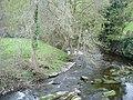 Afon Elwy - geograph.org.uk - 161037.jpg