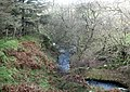 Afon Nant Gwrtheyrn in its middle course - geograph.org.uk - 717681.jpg