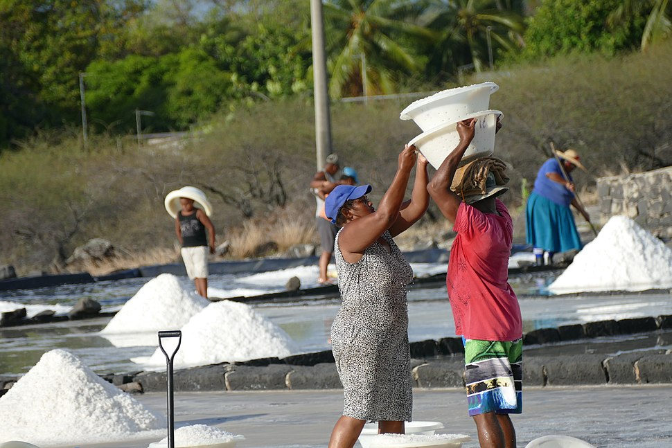 African working in the salt marshes
