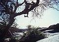 Ahaggar Mountains 1981 71.jpg