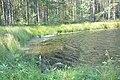 Aklais ezers, Vecumnieku pagasts, Vecumnieku novads, Latvia - panoramio (3).jpg