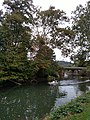 Allegheny River Kittanning Fall 2016 - panoramio - Ron Shawley (2).jpg