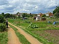 Allotments, North Town, Maidenhead - geograph.org.uk - 855565.jpg
