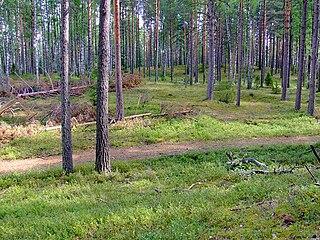 Bezhanitsky District District in Pskov Oblast, Russia