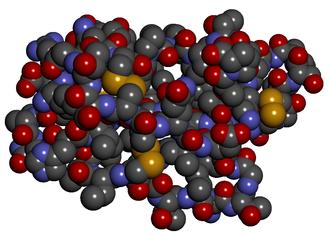 Cobratoxin - Space filling diagram