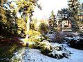 Alpinarium w Toruniu, zima.jpg