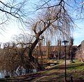 Altendorfer Teich.jpg