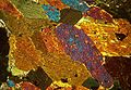 Amphibolites-hornblende.jpg