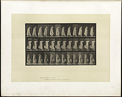 Animal locomotion. Plate 37 (Boston Public Library).jpg