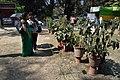 Annual Flower Show - Agri-Horticultural Society of India - Alipore - Kolkata 2013-02-10 4598.JPG