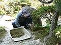 Another maintenance worker, keeping Ginkaku-ji's grounds tidy (529048839).jpg