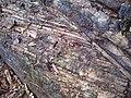 Anthropocene weathering on hillside - geograph.org.uk - 708966.jpg