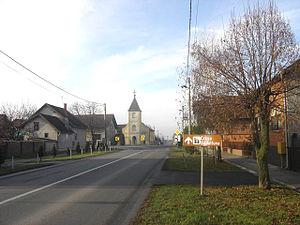 Antunovac - Street in Antunovac