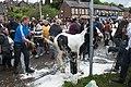 Appleby Horse Fair (7172498471).jpg